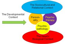 Pocket: Psychotherapy's Fifth Wave
