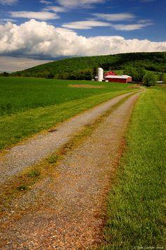 Loudoun Farm Lane | by Tom Lussier Photography