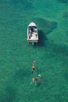 Florida Key diving/snorkeling