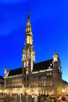 Brussels' Town Hall This is a beautiful place to visit! Beautiful Places To Visit, Oh The Places You'll Go, Wonderful Places, Places To Travel, Voyage Europe, Town Hall, Beautiful Buildings, World Traveler, Destinations