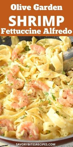 Try this easy recipe of Olive Garden copycat Shrimp Fettuccine Alfredo- superb,creamy,delicious and best recipe of alfredo sauce with shrimp and fettuccine together makes this complete meal and best homemade dish from scratch. Shrimp Fettucini Recipes, Shrimp Alfredo Recipe, Shrimp Fettuccine Alfredo, Creamy Pasta Recipes, Yummy Pasta Recipes, Linguine, Shrimp Recipes, Tufo Recipes, Creamy Shrimp Pasta