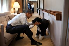 Well, this is just TOO cute!!  The Prez loves his Bo!!
