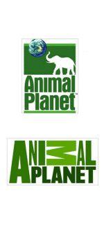 Animal Planet Logo Design
