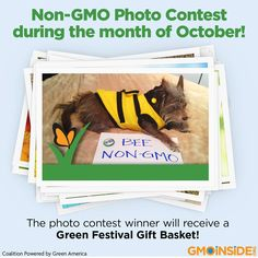 October is Non-GMO month! Enter a fun photo of yourself contributing in any way to spreading the word about the harmful effects of GMOs! Be creative! The photo contest winner will receive a Green Festival Gift Basket! Get information here: https://www.facebook.com/GreenFestival?sk=app_451684954848385&brandloc=DISABLE&app_data=chk-542c5663161a1 Green Festival Chicago Non-GMO Project