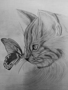 Art Drawings Sketches Simple, Realistic Drawings, Cool Drawings, Drawing Ideas, Pencil Drawings Of Animals, Animal Sketches, Arte Sketchbook, Cat Art, Painting & Drawing