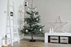 Lekker Fris: Kerst 2013 (deel 2)