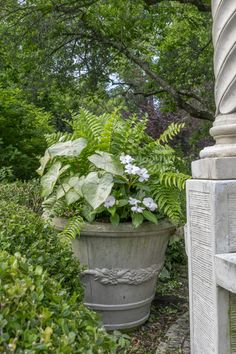 The basics of container gardening: Thrillers, Fillers and Spillers. Lists of suggested plants and plant combination examples.