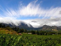 Stellenbosch View, South Africa Oh The Places You'll Go, Places Ive Been, Tourist Spots, Adventure Travel, South Africa, Scenery, Super Natural, Rat Rods, Neverland
