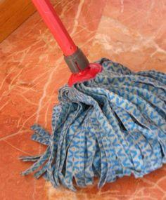 Fregona Vacuums, Home Appliances, House Appliances, Vacuum Cleaners, Appliances