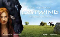 Cinema, Horses, World, Books, Movie Posters, Movies, Attila, Animaux, Nice Asses