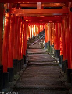 Photo Of The Day: The Iconic Torii Of Kyoto, Japan | Gadling.com
