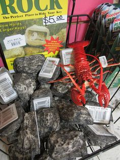 Rock Lobster at Archie McPhee