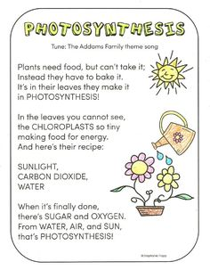 FREE photosynthesis song printable and other activities for teaching photosynthesis to young learners.
