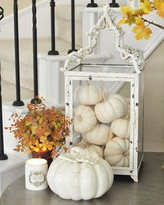 Is it just me or are these mini white pumpkins one of the best things about fall? I don't know about you, but I've started quite the collection over here. Anyway, I hope your Thursday is off to a great start! Thanksgiving Decorations, Seasonal Decor, Holiday Decor, Fall Decorations, Autumn Decorating, Pumpkin Decorating, Decorating With White Pumpkins, White Pumpkin Decor, Autumn Home