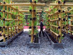 The Babylon Urban Garden Made Out of Bamboo Vegetables Vertical garden Vertical Vegetable Gardens, Vertical Farming, Vegetable Garden Design, Vertical Garden Design, Vertical Planter, Urban Garden Design, Hydroponic Gardening, Organic Gardening, Urban Gardening