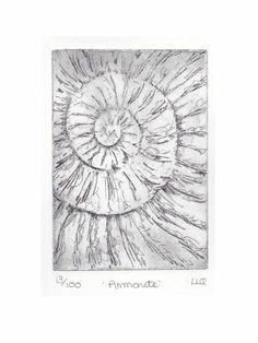 Etching no.13 of an ammonite fossil in an edition of 100 £30.00