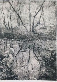 TAKASE Motohiko(高瀬元彦 Japanese) Water 2011 etching on gampi via Beautiful and Masterful! Landscape Drawings, Landscape Art, Landscape Paintings, Art Drawings, Japanese Art, Japanese Water, Etching Prints, Art Japonais, Art Graphique