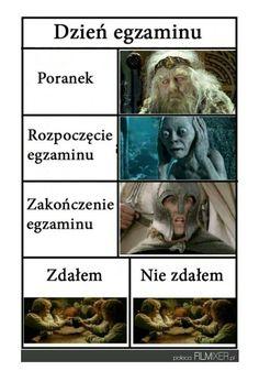 Wtf Funny, Funny Cute, Funny Memes, Funny Lyrics, Exams Memes, Exam Day, Polish Memes, Getting Bored, Lotr