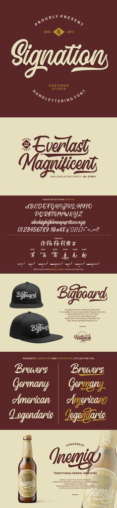 Buy Signation by garisman on GraphicRiver. Introducing: Signation – Script Font Signation comes from hand scratches to get natural and natural writing. Best Script Fonts, Hand Lettering Fonts, All Fonts, Geometric Font, Vintage Fonts, Brush Font, Modern Fonts, Beautiful Fonts, Diy Signs