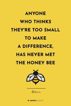 Honey Quotes, Bee Quotes, Sensitive Quotes, Sensitive People, Highly Sensitive, Bee Poem, Honey Bee Facts, I Love Bees, Save The Bees
