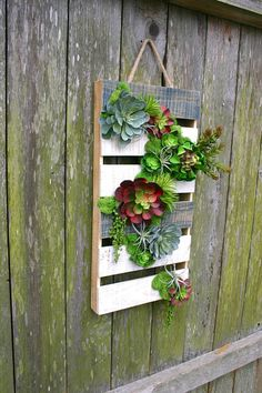 Faux Succulent Wall Hanging in Wooden Pallet Succulent Wall, Succulent Arrangements, Faux Succulents, Wooden Pallets, Air Plants, Patio, Decorations, Crafts, Home Decor