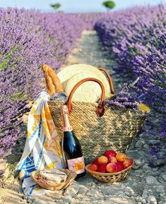 Picnic in the lavender fields, what can be better?☺️💜 Do you enjoy picnics?