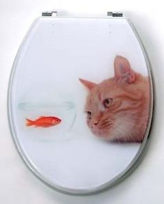 cat toilet seats | Designer Resin Toilet seat and cover gloss finish Cat Fish ...