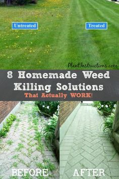 Getting rid of weeds in your garden can be a total pain, but these 8 homemade weed killing solutions may just help you eliminate weeds once and for all! These homemade weed killing solutions are… Diy Gardening, Gardening Supplies, Container Gardening, Vegetable Gardening, Organic Gardening, Gardening Shoes, Apartment Gardening, Garden Yard Ideas, Lawn And Garden