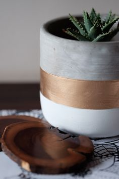 We are loving these beautiful pots from Mr Price Home in South Africa Mr Price Home, Potted Plants, Furniture Decor, South Africa, Concrete, Art Ideas, Planter Pots, Mint, Teen