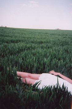... when the soul lies down in that grass, the world is too full to talk about. // Rumi