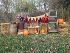 Fall Mini Session Set-Up