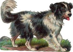 Victorian Die Cut Scrap Newfoundland Dog c1880