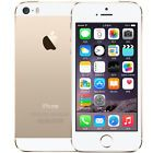 "Apple iPhone 5S GSM 4.0"" Factory Unlocked Smartphone 16G Gold"
