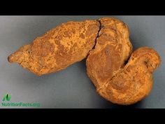 Paleopoo: What We Can Learn from Fossilized Feces | NutritionFacts.org