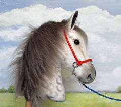 Halter and lead rope for large hobby-horsing horse. Red braided halter with blue lead rope.