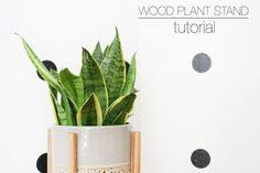 Wood Plant Stand Tutorial - Hello Lidy