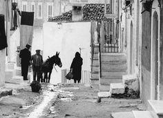 Gianni Berengo Gardin :: Puglia, 1958