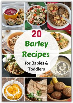 Barley is a healthy ingredient that's great for babies! Find out ways to introduce this grain in your diet with these Barley Recipes for babies & toddlers.