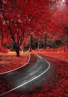 ✯ Spanish Autumn - Spain