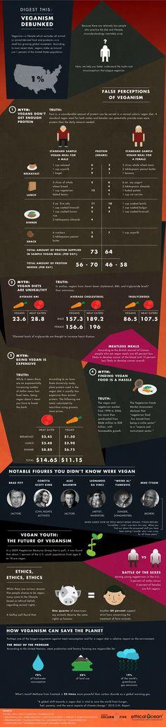 vegan myths infographic