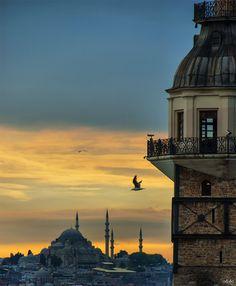 Suleymaniye Love.. by Osman Topcu