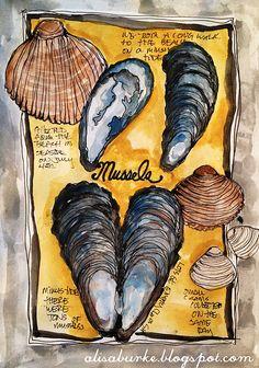 A Level Art Sketchbook Inspiration Mixed Media 27 Super Ideas Shell Drawing, A Level Art Sketchbook, Alisa Burke, Sea Life Art, Watercolor Sketchbook, Watercolor Ocean, Seashell Art, Nautical Art, Sketchbook Inspiration