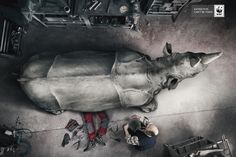 The Most Powerful Ads Of The World Wildlife Fund - photomanipulation #ads #advertisement
