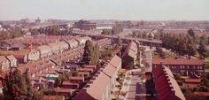 Jan Campertstraat Zwijndrecht (jaartal: 1950 tot 1960) - Foto's SERC