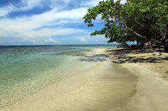 sb pv p beaches playa chino coastal almonds   - Costa Rica