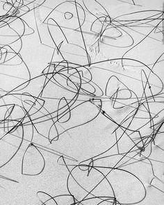 Reeds in Sand by Brett Weston