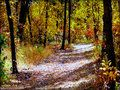 A Walk in Autumn - Autumn Image (19018573) - Fanpop