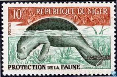 Niger - Dugong 1962