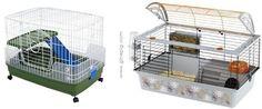Guinea Pig Kafesleri