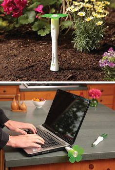 EasyBloom Helps Your Garden Grow - This Hi-tech, USB EasyBloom($60) can help you determine what kind of plant you should have on your desk based on the sunlight, humidity.. and it can also help you know what's problem with your plant. You just Plant it!